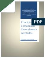Principios Contables y Nics_Gerardo Barralaga