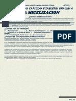 Micelizacion