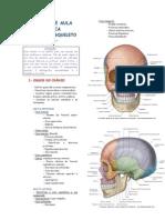 38036941 Roteiro de Aula Cranio