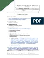 PROTECCION ESPECIFICA. PLANIFICACION 2010