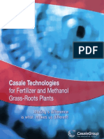 Casale Technologies for New Grass-roots Plants