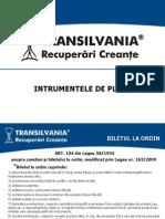 Transilvania Recuperari Creante_Instrumentele de Plata