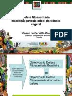 Palestra Defesa fitossanitária brasileira - DSV