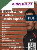 Revista Portaldelsur.es Diciembre