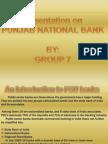 Presentation on Pnb
