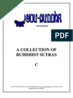 Buddhist Sutra C