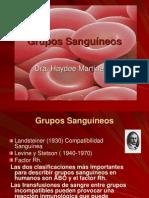 Grupos sanguíneosHaydee