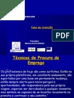 _tecnicas_de_procura_de_emprego