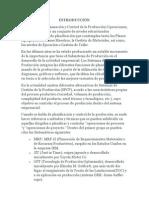 CONCLUSIONES pcp