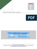 Visual Sap 2000