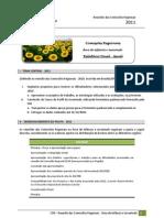 CR - 2011 - Relatório Final - Geral - Área de Infância e Juventude