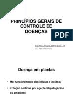 PRINCIPIOS GERAIS CONTROLE 1