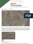 Wüsten-Gebilde dienen Spionage-Satelliten