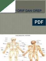 27_askep Orif Dan Orep