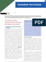 Le rapport d'activité « Dossiers politiques »
