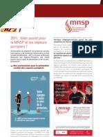 Le rapport d'activité « MNSP »