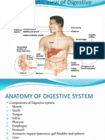 Gastrointestinal System Ppt.-new