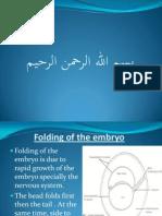 Amnion & Amniotic Cavity