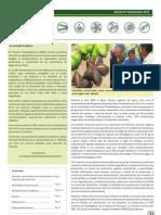 Boletín PBD Nº9