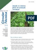 Adubo orgânico hortaliças