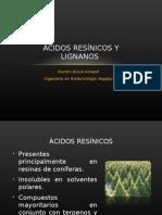 Acidos Resinicos y Lignanos Gaston Bravo
