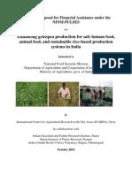 DAC-ICARDA Pilot Project- Enhancing Grasspea