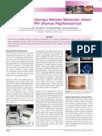 teknik PCR
