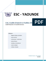 Audit Financier_ CAC Et Faillite d'Entreprise