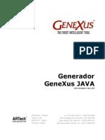 Generador Genexus Java