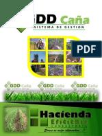 brochure software GDDCAÑA