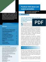 PracticalPreventionCommunityProfessionalPartnership_NCPCH_AFB