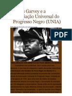 Marcus Garvey e a Associação Universal do Progresso Negro