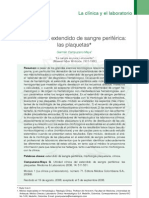 plaquetas tincion