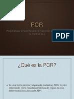 Expo PCR