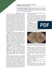 Cupido - Biochemical and Basic Geophysical Field Study of Mars - Orange Team 2007