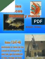Peces Buenos y Malos (2)