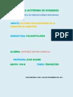 ENSAYO DE ARRECIFES (1)