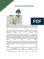 Biopori Teknologi Tepat Guna Dan Ramah Lingkungan