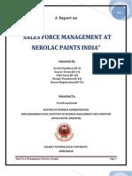 Nerolac Sales Force Management