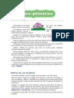 Practica de Plantas