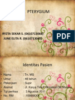 PTERYGIUM (June Ryzta)