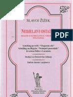Slavoj Žižek - Nedjeljivi Ostatak
