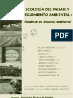Ecologia Del Paisaje y Seguimiento Ambiental-libro
