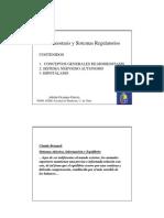 Clase Homeostasis Obstet Innovada 2010 PDF (1)