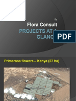 Projects at a Glance- Flora Consult