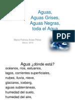 Aguas Grises Patricia Araos 2010