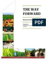 The Way Forward- Browns Farms-By Harindu Lorensu Hewa