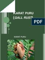 Karat Puru