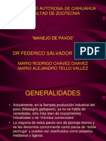 MANEJO_DE_PAVOS