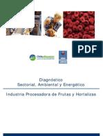 Diagnostico Sectorial Frutas Hortalizas